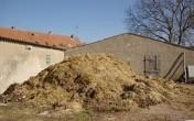 obornik za darmo-k/Poznania