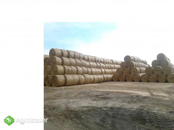 Słoma pszenna , żytnia , bale 160 cm , sezon 2012