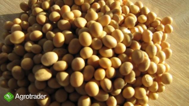 Verkauf von Sorghum, Sijabohnen