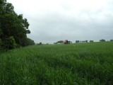 sprzedam działkę rolna w Piaskach koło Lublina 66