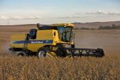 usługi koszenia kukurydzy na ziarno