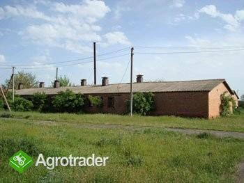 Ukraina.Trociny drzewne 4 zl/m3 + hala produkcyjna - zdjęcie 1