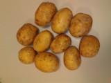 Sprzedam ziemniaki 40+