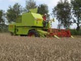 Claas Claas Compact 30 - 1982
