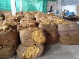 Sprzedam liście tytoniu Bułgaria