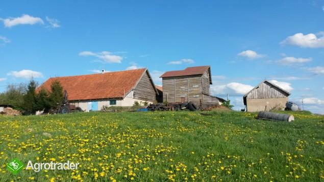 Gospodarstwo rolne - zdjęcie 5