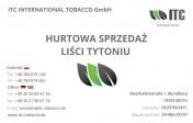 Liście tytoniu Ceny Hurtowe Virginia, Strips pierwsza ręka