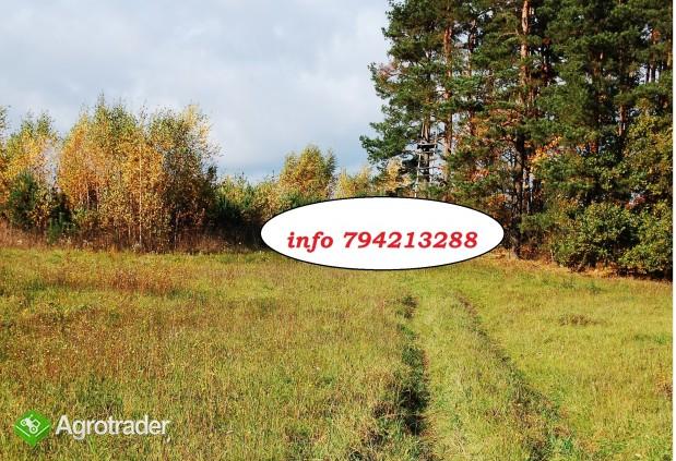 8,43 ha grunty inwestycyjne ( kopalniane ) OKAZJA CENOWA - zdjęcie 2