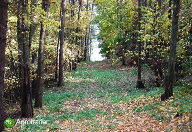 8,43 ha grunty inwestycyjne ( kopalniane ) OKAZJA CENOWA - zdjęcie 3