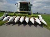 Przystawki do kukurydzy Claas Conspeed 8-75FC do Lexiona Tucano - 2szt