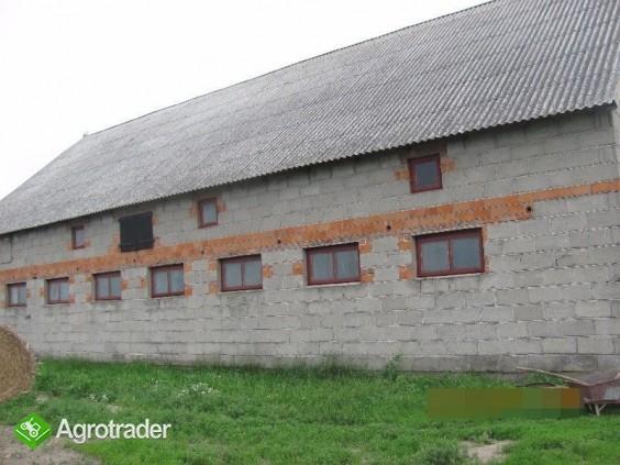 Gospodarstwo rolne, ziemia i budynki na sprzedaż Izbica Kujawska - zdjęcie 5