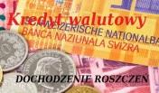 Kredyt walutowy - DOCHODZENIE ROSZCZEŃ