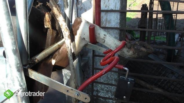 Poskrom do korekcji racic Elektryczno-Hydrauliczny - zdjęcie 2