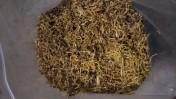 Tytoń Gliwice i okolice super jakosc za przystepna cene!
