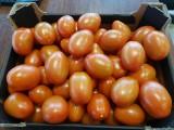 Pomidor śliwka, malina i czerwony