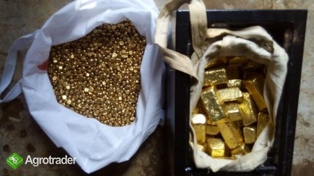Sztabki złota, kurz, bryłki i diamenty na sprzedaż