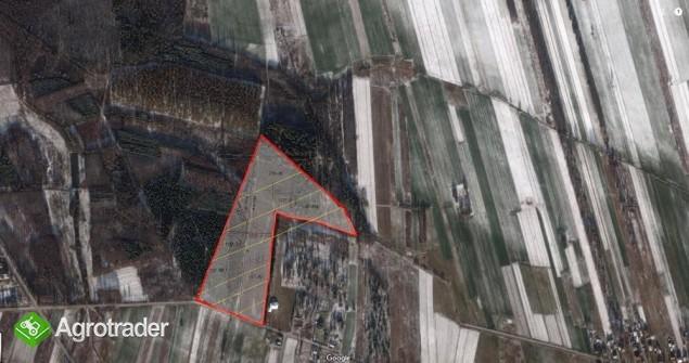 Na sprzedaż grunt rolny 11 Ha.Łuków, Wieś Ławki - zdjęcie 2