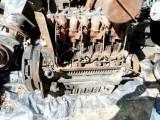 Silnik opalony Same Explorer 70,80,90 silver 90 1000.4a Hurlimann częś