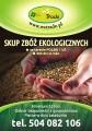 kupię ekologiczne żyto - skup ekologicznego żyta
