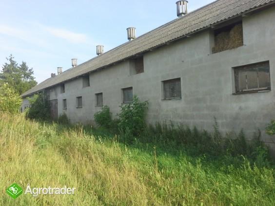 Gospodarstwo rolne na Suwalszczyźnie - zdjęcie 5