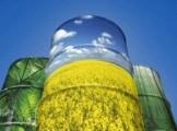 Ukraina.Olej rzepakowy 2,3 zl/litr + nasiona, sloma, biomasa, tluszcze