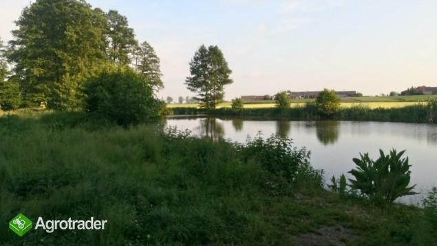 Sprzedam gospodarstwo/Siedlisko 13,48 ha ze stawem - zdjęcie 2