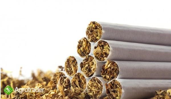 tani tyton papierosowy kg  65zł KG-ODBIOR OSOBISTY,WYSYŁKA 534-438-380 - zdjęcie 1