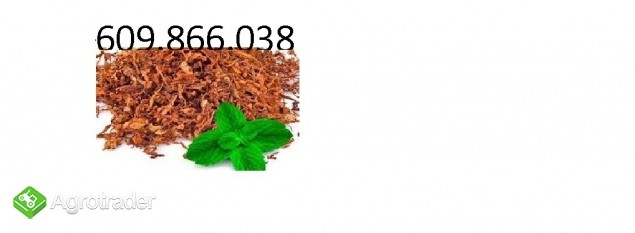 Tytoń dowóz tylko kurier cena 70 zł / kilogram