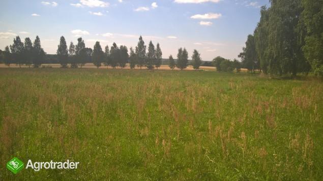Sprzedam gospodarstwo rolne!!! - zdjęcie 4