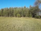 Sprzedam zadbany las z gruntem- 5 ha z dofinansowaniem z Unii do 2027r