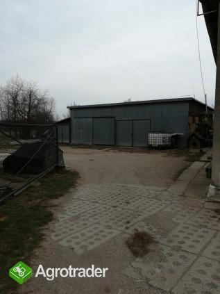Gospodarstwo rolne 3,1 h Wigancice Żytawskie gm. Bogatynia - zdjęcie 4