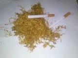 tytoń gotowy do palenia 70 zł