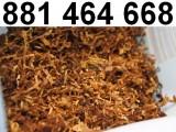 Tani tytoń mocny, słaby i średni. GRATISY! Super jakość jak w sklepie