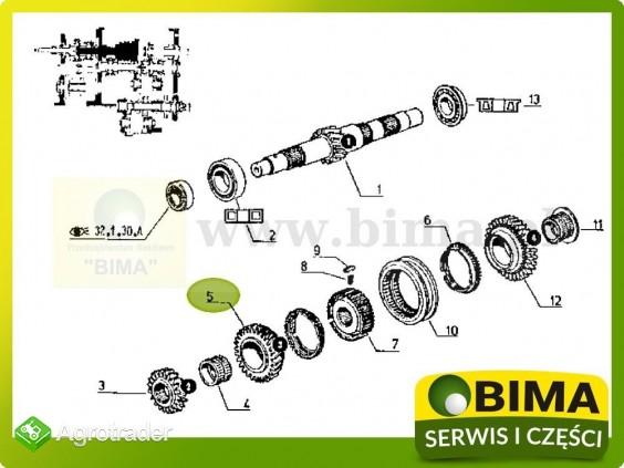 Używane koło zębate 3 biegu z29 Renault CLAAS 950 MI - zdjęcie 2
