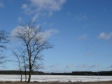 kupie ziemie rolną w mazowieckim