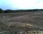 Działki; 56 ha, 55 ha, 24 ha, 20, 30, 39 ha - SPRZEDAM