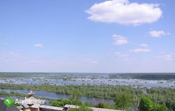 Ukraina.Staw rybny35ha+torfowiska30ha.Wydzierzawie - zdjęcie 4
