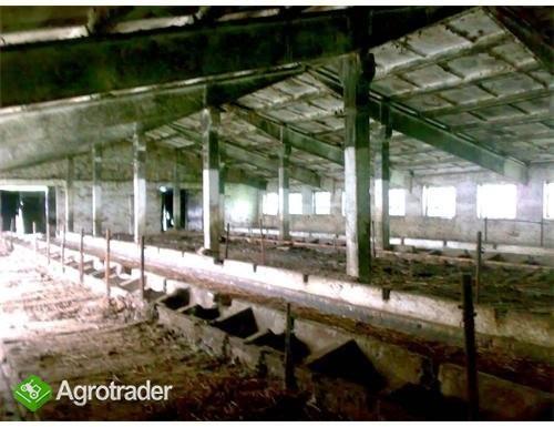 Ukraina.RolniczeDuzy wybor za najnizszymi cenami - zdjęcie 2