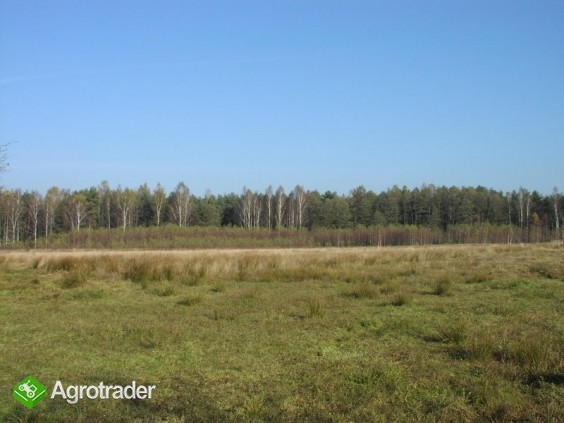 Gospodarstwo ekologiczne w dzierżawę